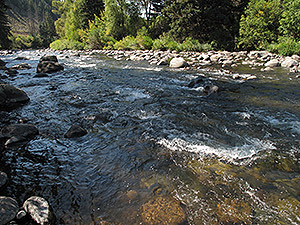 Streamflow Data